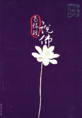 南怀瑾说佛:现代学佛者--修证对话(试读本)