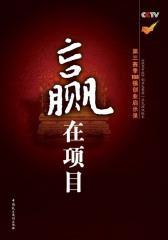 赢在项目:赢在中国第三季108强创业启示录