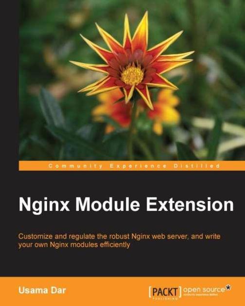 Nginx Module Extension