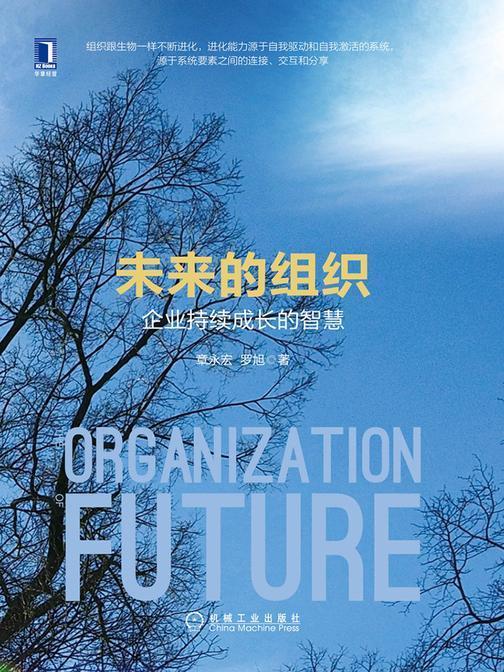 未来的组织:企业持续成长的智慧