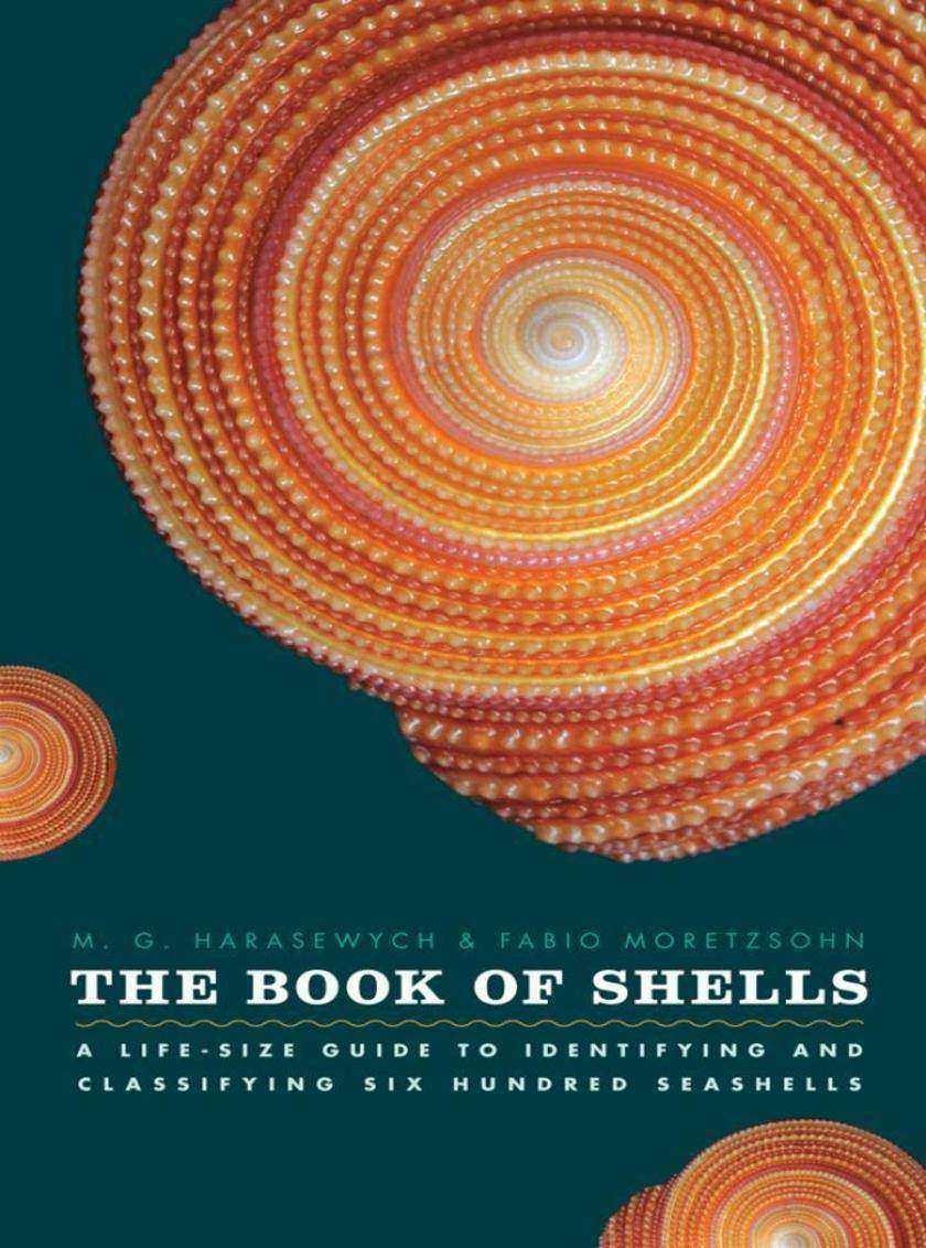 Book of Shells