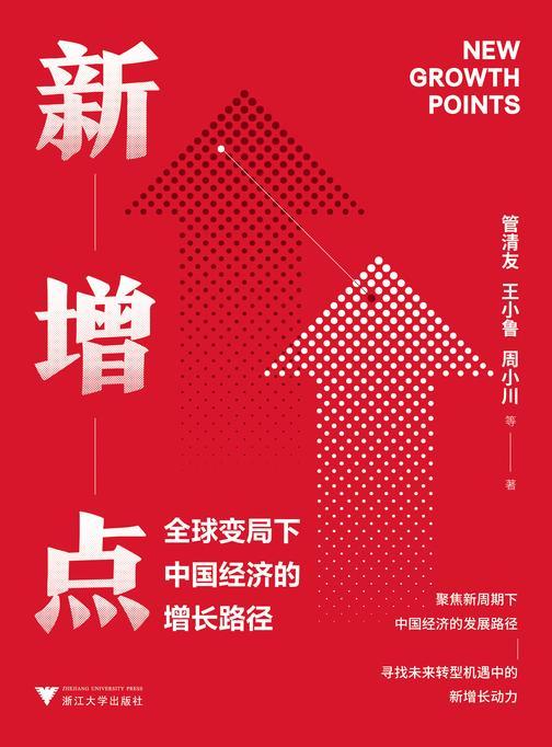 新增点 : 全球变局下中国经济的增长路径