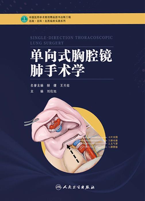单向式胸腔镜肺手术学