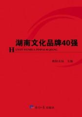 湖南文化品牌40强