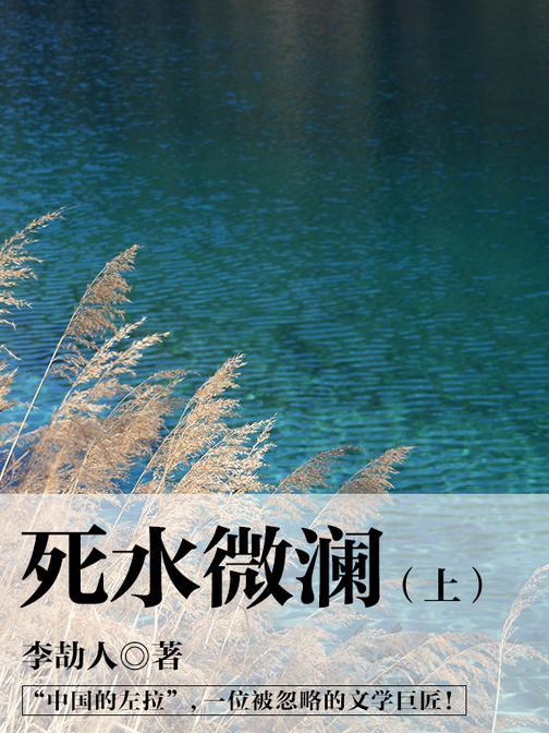 中国经典文学:死水微澜(上)