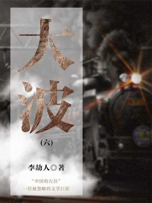 中国经典文学:大波(六)