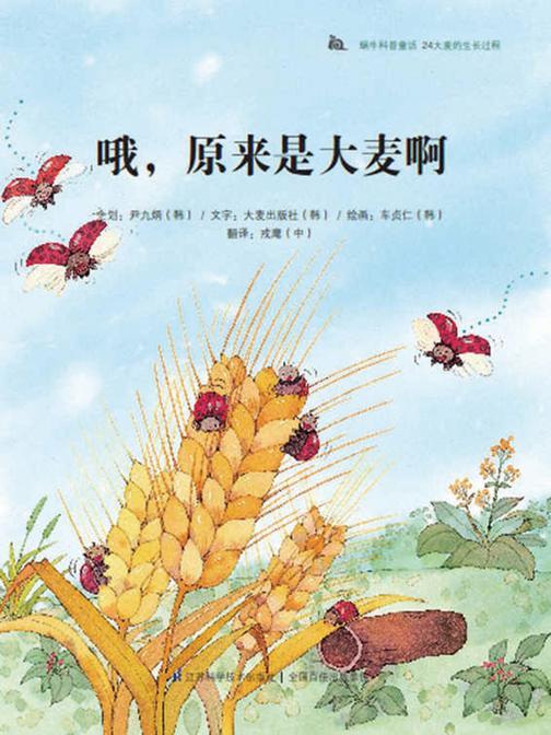 哦,原来是大麦啊——大麦的生长过程