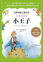 世界经典儿童文学注音美绘版-小王子