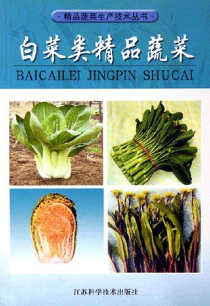 白菜类精品蔬菜(仅适用PC阅读)