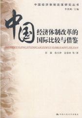 中国经济体制改革的国际比较与借鉴