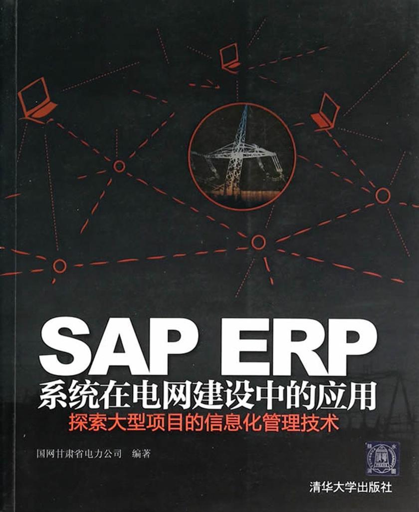 SAP ERP系统在电网建设中的应用:探索大型项目的信息化管理技术(仅适用PC阅读)