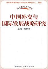 中国外交与国际发展战略研究