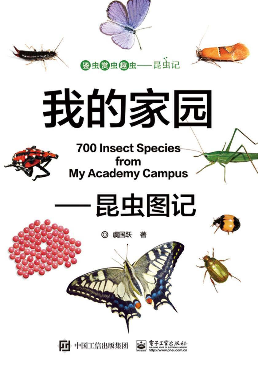 我的家园——昆虫图记