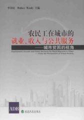 农民工在城市的就业、收入与公共服务:城市贫困的视角(仅适用PC阅读)