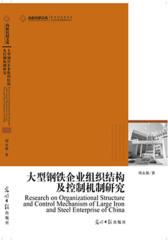大型钢铁企业组织结构及控制机制研究
