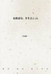 权路迷局:步步青云(1)