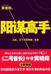 阳谋高手(第四部分)(试读本)
