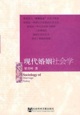 现代婚姻社会学