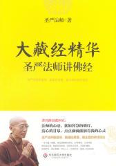 大藏经精华:圣严法师讲佛经