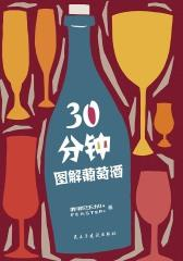 30分钟图解葡萄酒(0基础葡萄酒入门的不二之选)