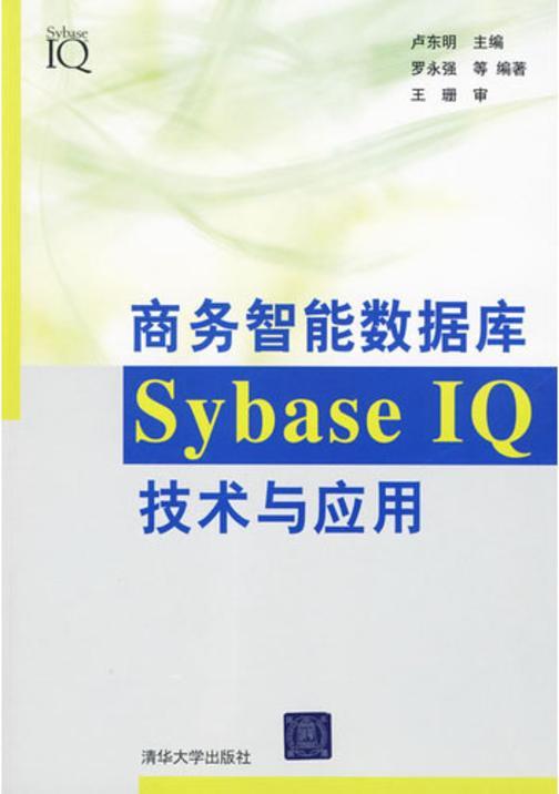 商务智能数据库SybaseIQ技术与应用(仅适用PC阅读)