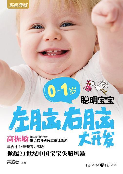 0~1岁聪明宝宝左脑右脑大开发