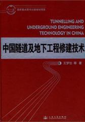 隧道与地下工程技术及其发展(仅适用PC阅读)