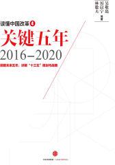 读懂中国改革4,关键五年2016~2020