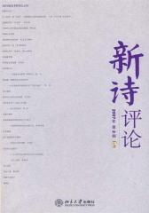 新诗评论2007年第2辑(总第六辑)(仅适用PC阅读)
