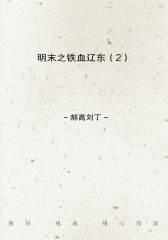 明末之铁血辽东(2)