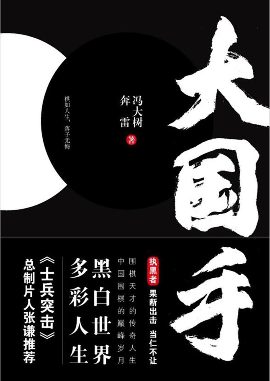 大国手(中国围棋天才传奇人生,《士兵突击》总制片人张谦推荐)