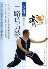 少林三路功力拳(仅适用PC阅读)