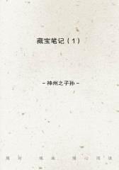 藏宝笔记(1)