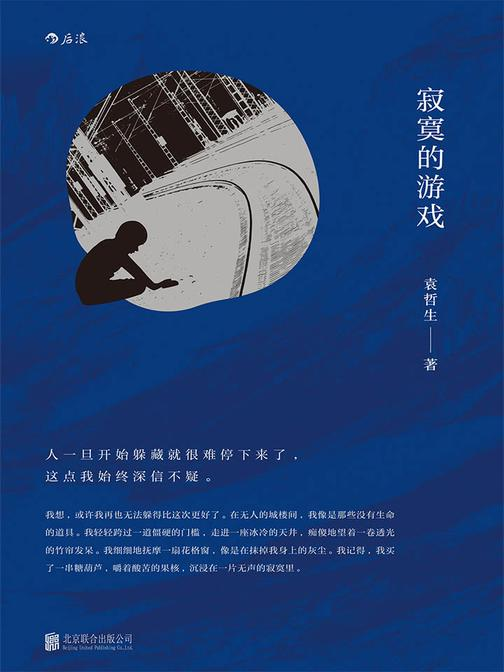 寂寞的游戏(豆瓣2017年度读书榜单,中国文学(小说类)TOP1,用纯真的双眼捕捉孤独的角落。)