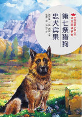 第七条猎狗·忠犬宾果