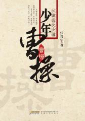 少年曹操(仅适用PC阅读)