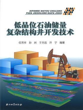 低品位石油储量复杂结构井开发技术