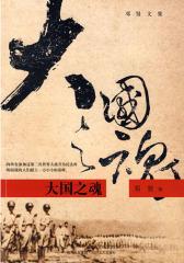 大国之魂(试读本)
