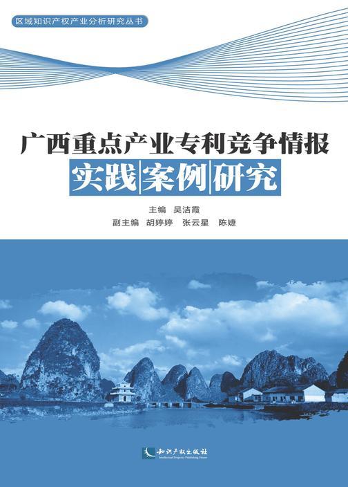 广西重点产业专利竞争情报实践案例研究
