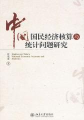 中国国民经济核算与统计问题研究(仅适用PC阅读)