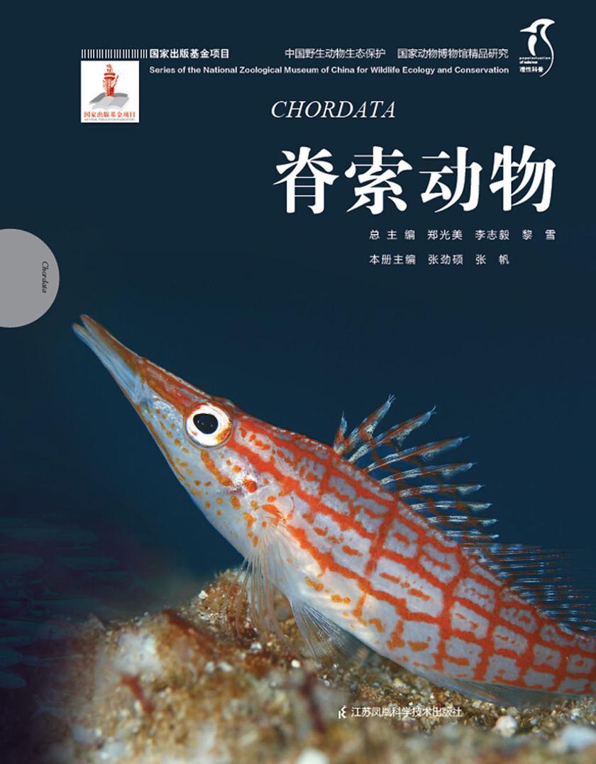 国家动物博物馆精品研究——脊索动物