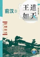 王道如天·前汉③(仅适用PC阅读)