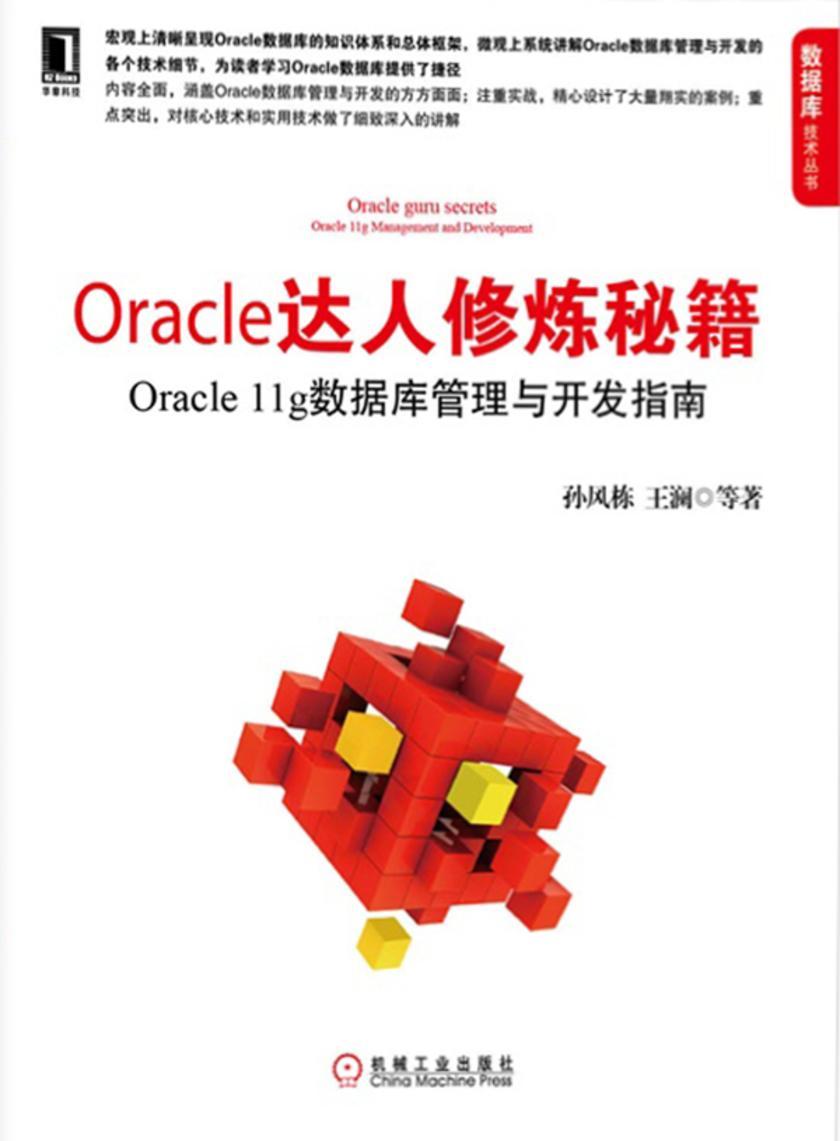 Oracle达人修炼秘籍:Oracle 11g数据库管理与开发指南(仅适用PC阅读)