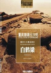 重庆旅游全攻略-白鹤梁(仅适用PC阅读)