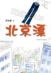 北京漂(试读本)