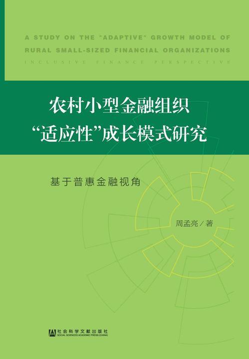 """农村小型金融组织""""适应性""""成长模式研究:基于普惠金融视角"""
