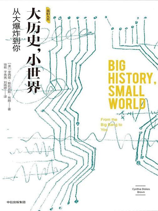 大历史,小世界:从大爆炸到你