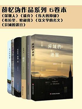 薛忆沩作品系列(6卷本)