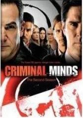 犯罪心理第二季(影视)
