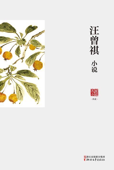 名家小说典藏:汪曾祺小说